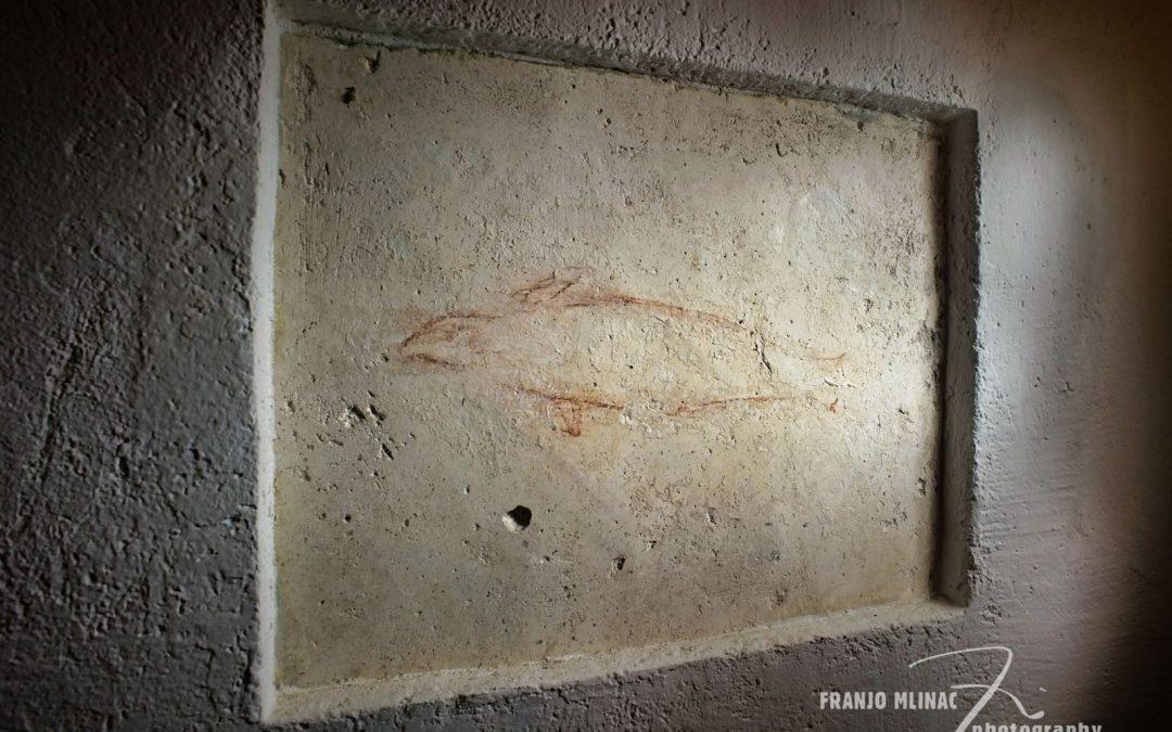 Crtice iz stivanske povijesti – crtež morske medvjedice u crkvici sv. Ivana