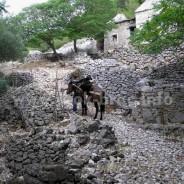 Dragovode – Drage vode, naselje