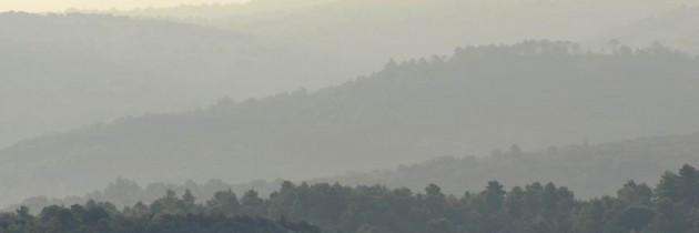 Jutarnji pejzaž